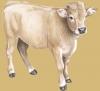 yochi90 - Farmzer granjero